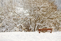 Bench in a picnic field covered with snow Stock Images