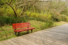 Bench by plank pavement in blossomy spring Royalty Free Stock Images
