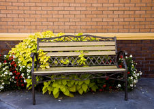 Bench and Plants on Brick Wall Royalty Free Stock Photography