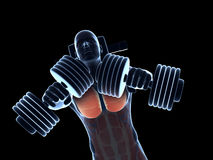Bench press workout. 3d rendered illustration of a bench press workout Stock Images