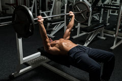 Bench Press Workout Royalty Free Stock Image