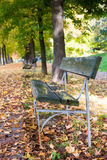 Bench in public garden Royalty Free Stock Photography