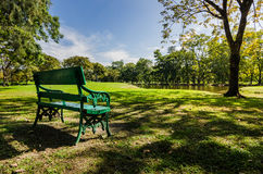 Bench in public park with shadow of green tree Stock Image
