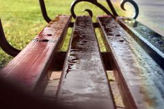 Bench in the rain drops in the park. Autumn. royalty free stock photography