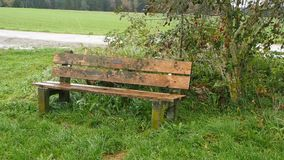 Bench in the rain stock footage