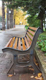 Bench after rain. Stock Image
