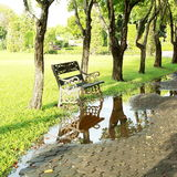 Bench Reflection in the nature park. Royalty Free Stock Images