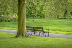 Bench in Regent's Park Royalty Free Stock Photos