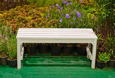 Bench for relaxing. Stock Photography