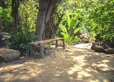 Bench for a rest in a park in the jungle. In Vietnam Stock Photos