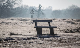 Bench in richmond park. Early January Stock Photo