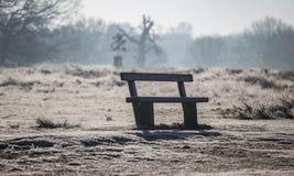 Bench in richmond park Stock Photo