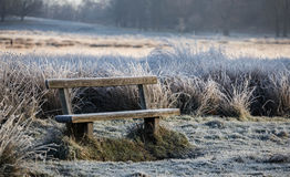 Bench in richmond park. Early January Stock Photos