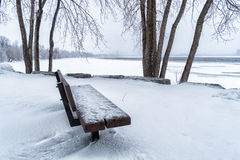 Bench on the river Royalty Free Stock Image