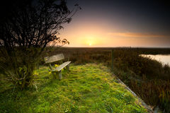 Bench by river at sunrise Stock Image