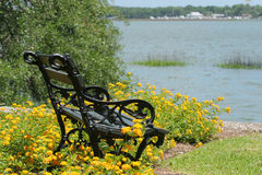 Bench by the sea. In flower bed Stock Image