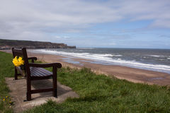 Bench at seaside. In holiday Royalty Free Stock Images