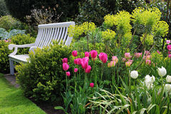 Bench seat in an english garden in early summer Stock Photography