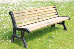 Bench seat flowery meadow Royalty Free Stock Photo