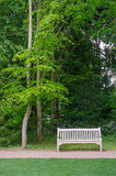 Bench seat under tall trees Royalty Free Stock Photos