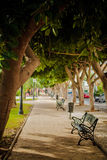 Bench At Shade. The bench just waits for you to rest your feet. In Andalusia, Spain. Follow me on Twitter to see if your travel picture is on focus this week! | royalty free stock photo
