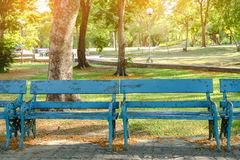 Bench in the shady park Royalty Free Stock Photography