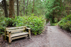 Bench by side of nature path Royalty Free Stock Image