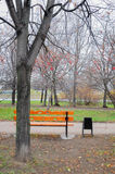 Bench. Single bench in the park Stock Photo