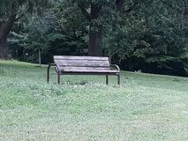 A bench sits empty near trees in the park royalty free stock images