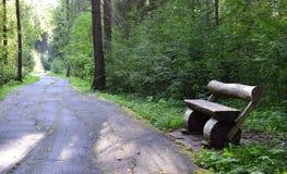 bench skogen royaltyfria bilder