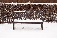 Bench in the snow Stock Image