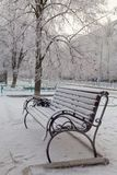 A bench in the snow. City landscape. Bench in the snow. City winter landscape Royalty Free Stock Photos