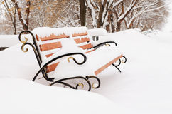 Bench  in snow-covered winter park Royalty Free Stock Image