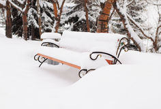 Bench in snow-covered winter park Stock Photo