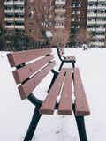 The bench in the snow . It is snowing ,this is the bench side of the pathway Stock Images