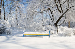 A bench in the snow under the tree Royalty Free Stock Photography