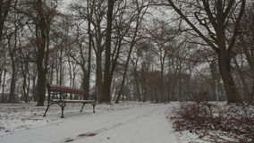 Bench in snowing. The bench has some snow on the surface, but the snow storm has beginning soon stock video footage