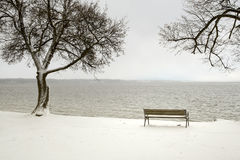 Bench in a snowy winter senery Stock Images