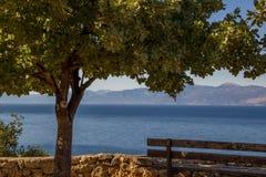 bench sob uma árvore e o mar no fundo foto de stock royalty free
