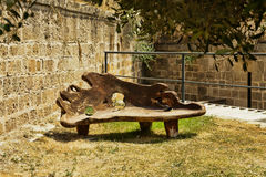 Bench solid wood Olive Stock Photo