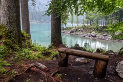 Old wooden bench on the shore of Lago di Fusine. A bench and some big trees on the shore of Lago di Fusine, Italy in rainy weather royalty free stock images