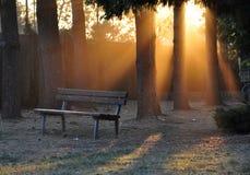 Bench am Sonnenuntergang Lizenzfreie Stockfotos