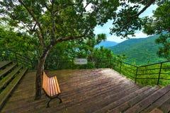 Bench sotto l'albero sull'allerta nelle montagne Baia di Yalong Immagine Stock