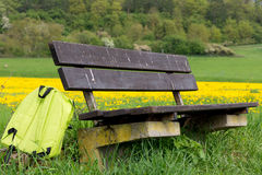 Bench in spring Royalty Free Stock Image
