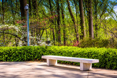 Bench and spring color at the Washington DC Mormon Temple in Ken Royalty Free Stock Image