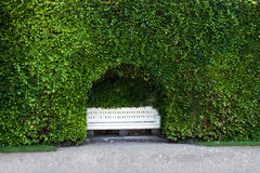 The bench, standing in a niche of the hedge. Stock Photos