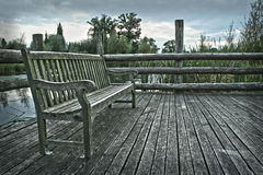 Bench in Still Life Royalty Free Stock Image