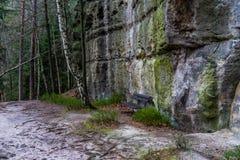 Bench su una traccia fra le rocce dell'arenaria in una foresta Fotografie Stock Libere da Diritti