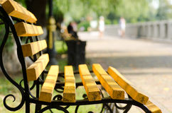 Bench on a summer evening Stock Photography
