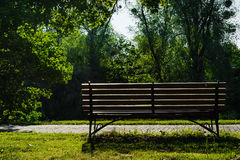Bench in summer park in the morning Stock Images